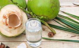 Suy thận có uống được nước dừa không