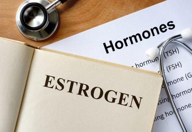 Estrogen là loại hormone nữ quan trọng nhất
