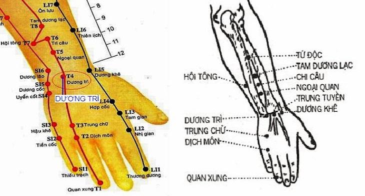 Huyệt vị có rất nhiều tác dụng trị các bệnh lý về xương khớp ở cổ tay