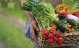 Bị sỏi thận nên ăn rau gì và kiêng ăn rau gì là tốt nhất?