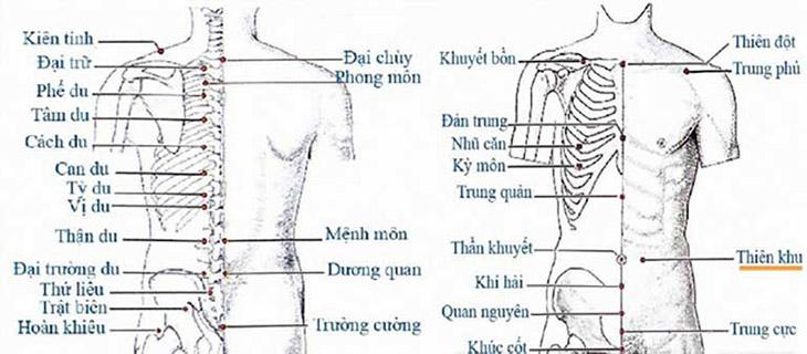 Hình ảnh về việc phối hợp các huyệt với huyệt cách du