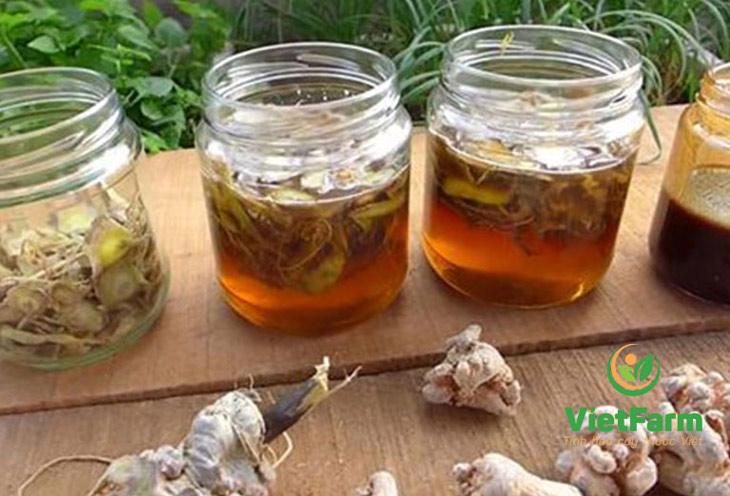 Cách dùng tam thất bắc ngâm mật ong mang lại nhiều công dụng cho sức khỏe