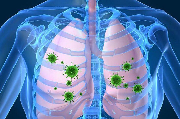 Virus cúm A có thời gian ủ bệnh khá ngắn