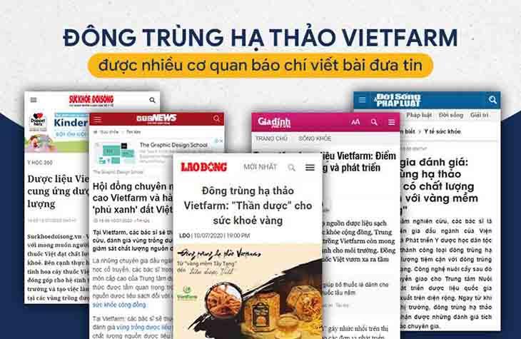 Trang báo lớn, chính thông đưa tin về Đông trùng hạ thảo Vietfarm