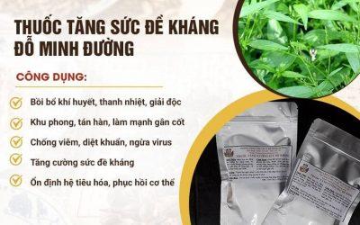 Thuốc tăng cường sức đề kháng Đỗ Minh