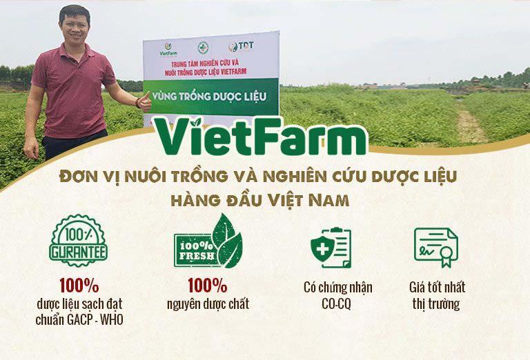 Vườn trồng dược liệu đạt chuẩn GACP - WHO