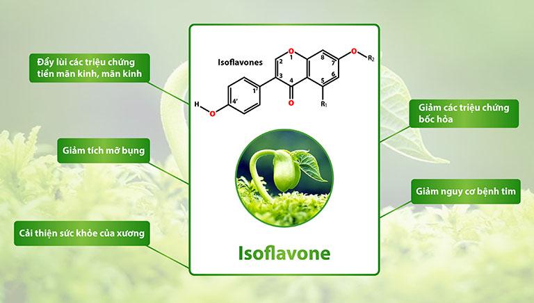 Isoflavone được cho rằng mang lại nhiều lợi ích cho sức khỏe, đây cũng là thành phần xuất hiện nhiều trong các viên uống tăng ham muốn